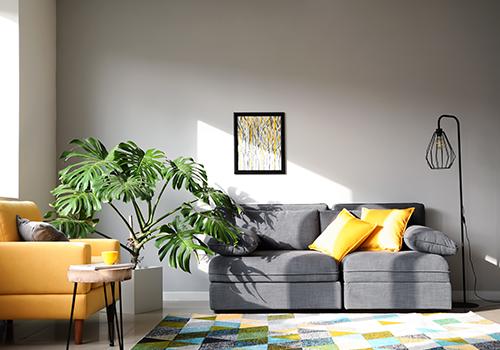 room colour design photo