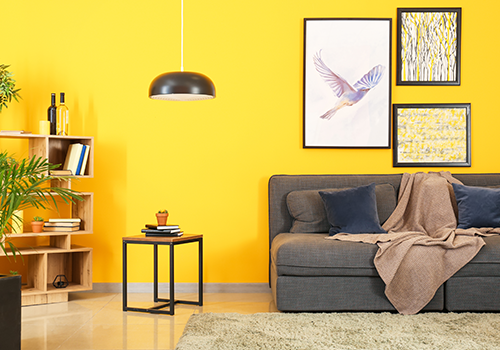 Home Interior Wall Paint Ideas