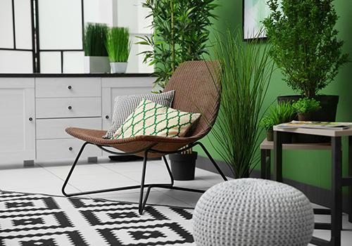 Interior Paint & Decor Ideas
