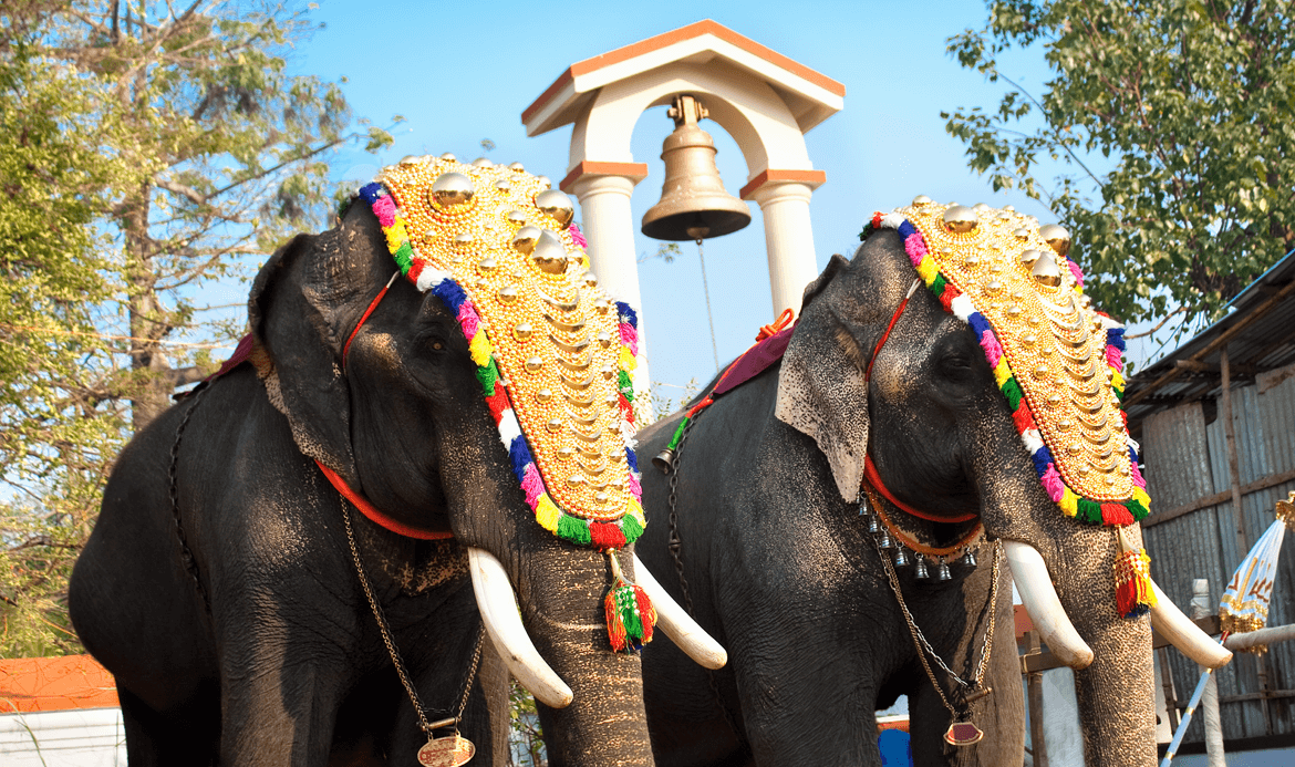 Trissur Pooram The Festival Of Festivals Berger Blog The advantage of transparent image is that it can be used efficiently. trissur pooram the festival of