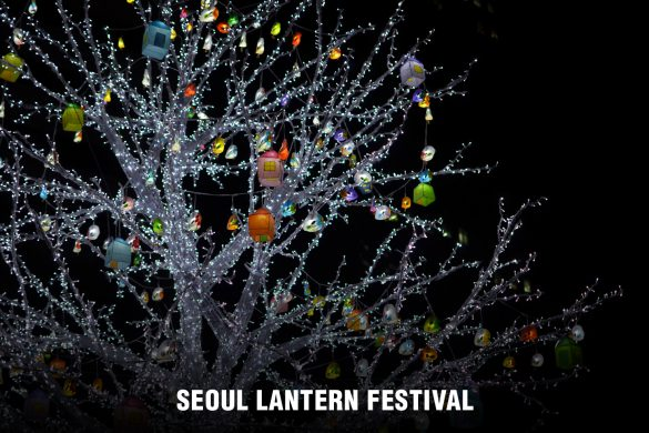 Seoul Lantern Festival 2